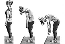 flexibility exercises 21 stretches to help improve your