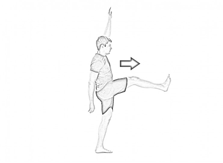 Straight leg walk with arm lift-2